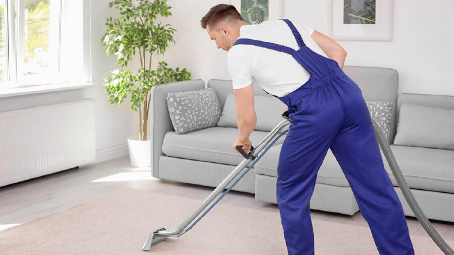 Cleaners in Surbiton
